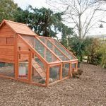 How To Build A Chicken Coop Out Of Pallets In Few Easy Steps