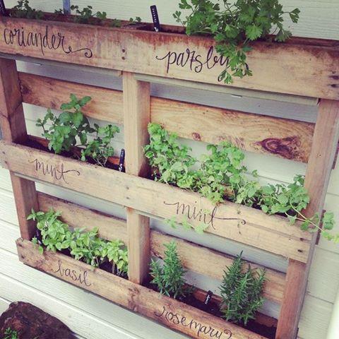 pallet vertical garden project How To Make a Vertical Pallet Herb Garden   DIY Cozy Cottage