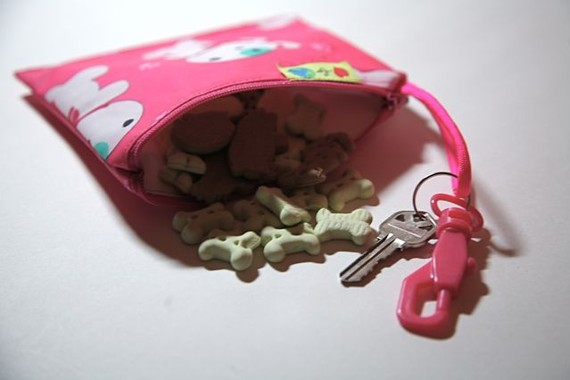 Pink reusable dog treat bag Leash bag and key ring by LoveForEarth