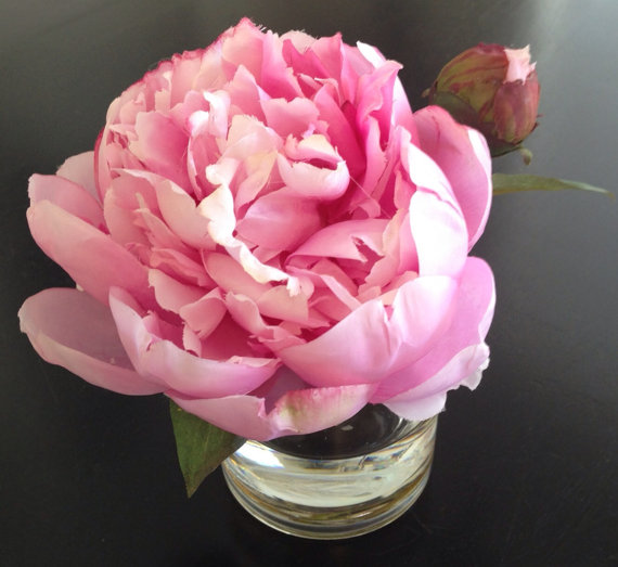 Fine Silk Floral Arrangement Faux Pink Peony In Cylinder with Illusion Faux Water Shabby Chic by SkyDesignsUSA