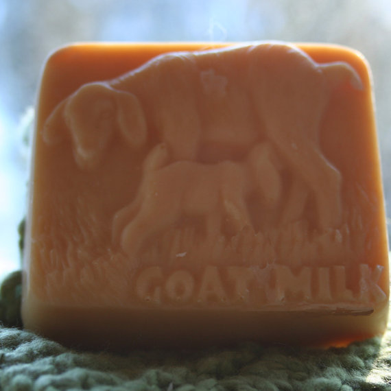 Fruity Scented Goat's Milk Soap, Goat and Kid Soap, Fruity Goat Soap, Abby and Nora the Soap, Homemade Soap, Montana Made Soap by happygoatsoap