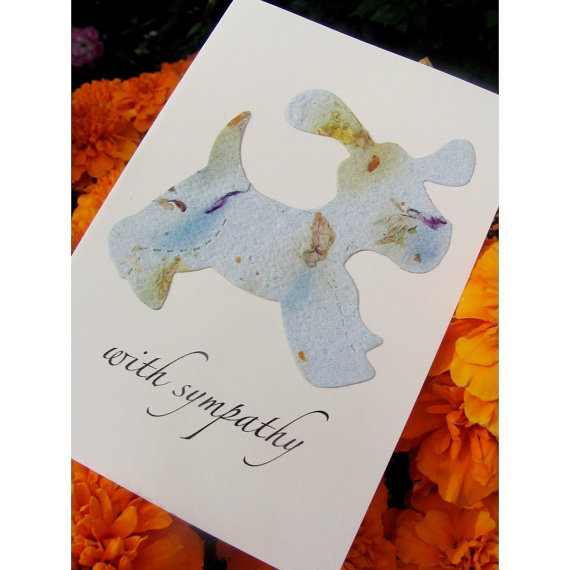 Pet Sympathy Card Plantable – Dog or Cat – Forget Me Not Flower Seeds by recycledideas
