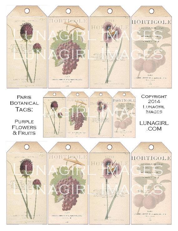 PARIS BOTANICAL TAGS Purple Flowers Fruit digital collage sheet Download vintage images floral Victorian art card shabby ephemera printables by Lunagirl