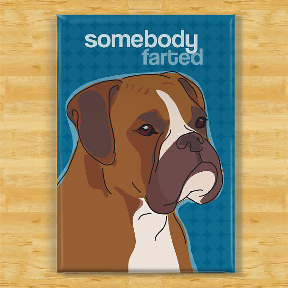Boxer Magnet – Somebody Farted – Boxer Gifts Dog Refrigerator Fridge Magnets by PopDoggie
