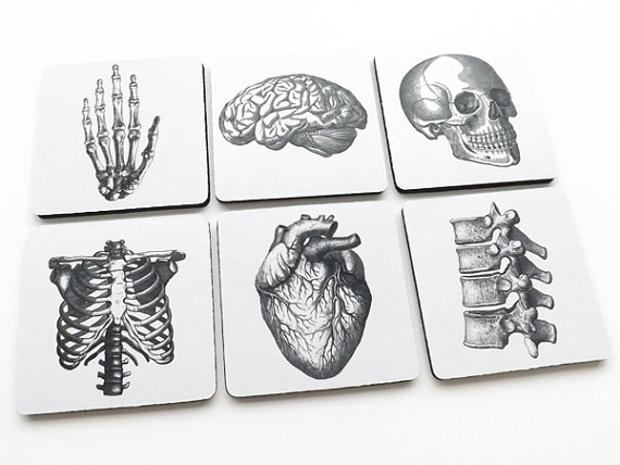 COASTERS Anatomy hostess graduation gifts medical student goth skull anatomical heart party favors stocking stuffer geekery brain human body by artaltered