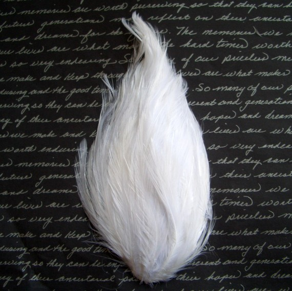 White Hackle Feather Pad by FeatherShoppe