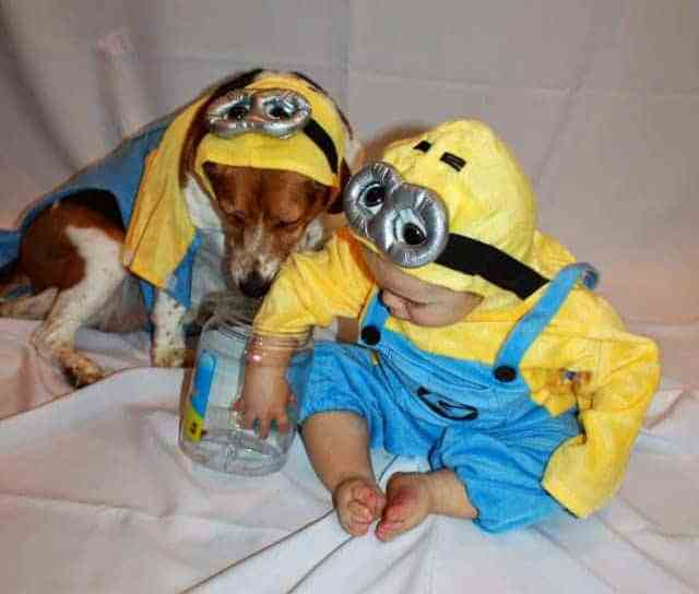 How sweet are these two little Minions!