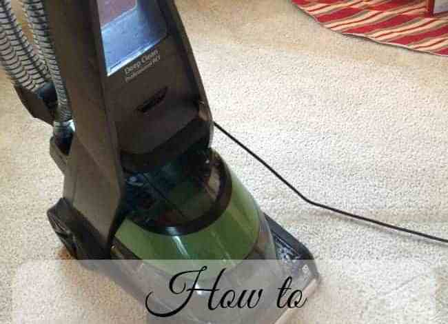 How to Deep Clean your Steam Cleaner for Pet Owners