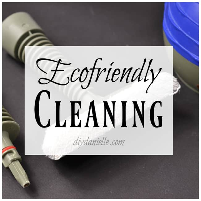 Cleaning with Green Products
