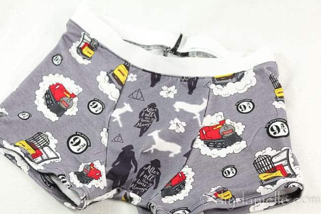 Harry Potter boxer briefs, handmade.