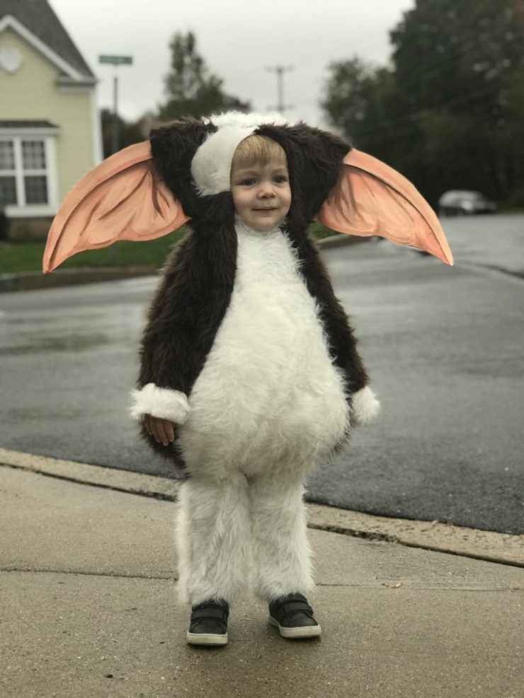 oliver modeling his gizmo halloween costume
