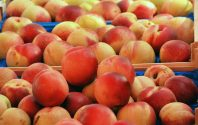 peach_hard_cider_recipe