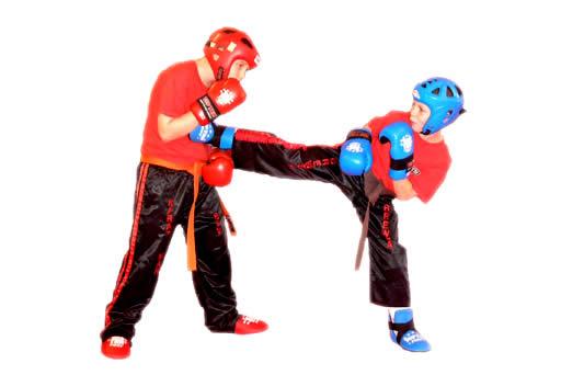 ¿Sabías que la Muchos Avatares emocionantes de Kick Boxing-7819