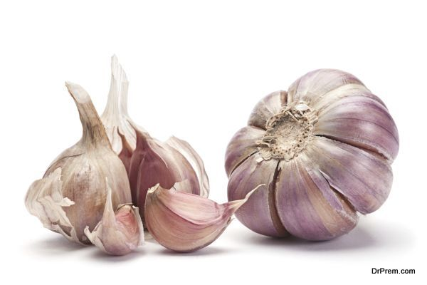 Garlic vegetable closeup isolated on white background