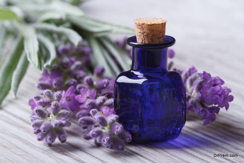 Power-of-Essential-Oils-Revealed