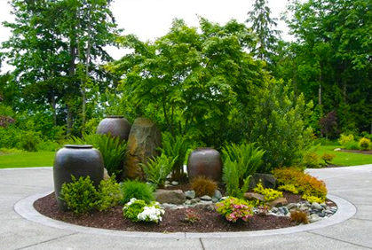 Top Plants for Landscaping with 2018 Planting Ideas on Tree Planting Ideas For Backyard id=27400
