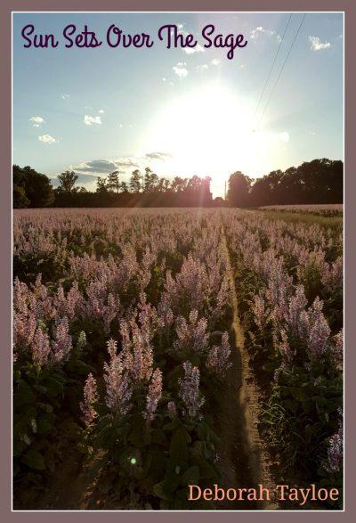 Bertie County, NC