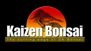 Kaizen-Bonsai-Logo
