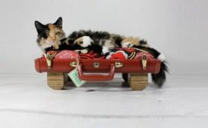 Vintage-Luggage-Pet-Beds