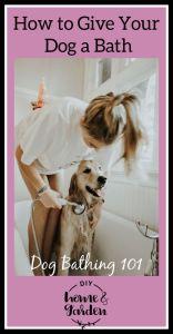 dog bath pin