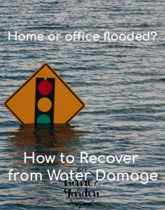 recover from water damage