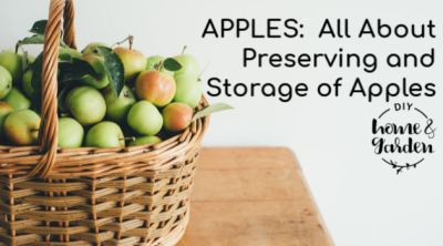 Apples Preserving and Storing