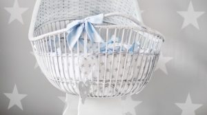 white bassinet for