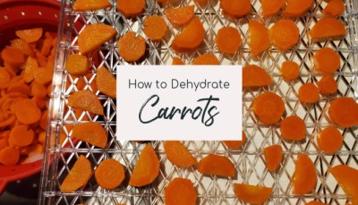 dehydrate carrots