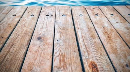 backyard safety pexels