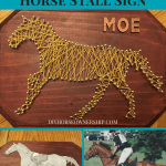 Diy How To Make A String Art Horse Stall Sign Diy Horse Ownership
