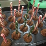 Do It Yourself Cake Pops For Horses Recipe Diy Horse Ownership