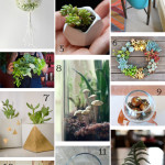 DIY Gift Guide: For the Plant Lover