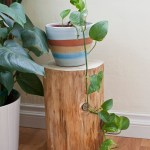 Log Plant Stand