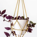 Make a Hanging Himmeli Plant Holder
