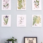 Free Printable Vintage Botanical Art
