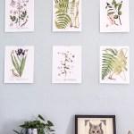 Free printable botanical prints