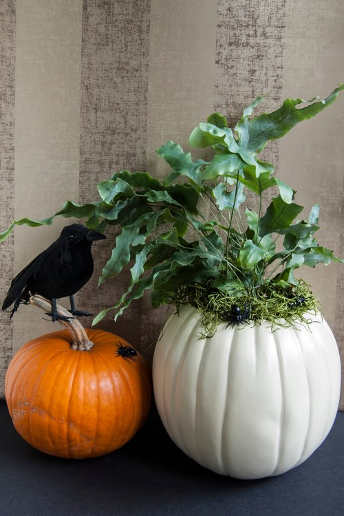 Make this Halloween pumpkin planter for a little bit of spooky Halloween decor that you can put out every year.