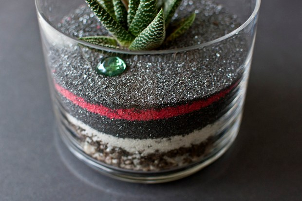 DIY striped terrarium