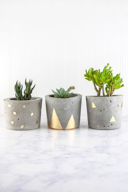 Learn how to make concrete and gold plant pots with this tutorial. #DIY