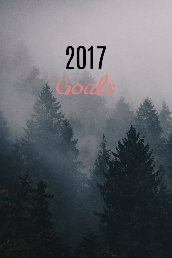 2017 Goals for the New Year