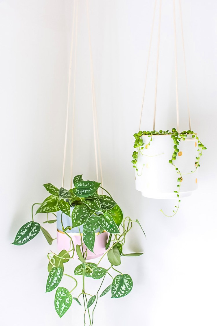 give a hanging planter an easy diy upgrade with paint and gold leaf - Diy Hanging Planter
