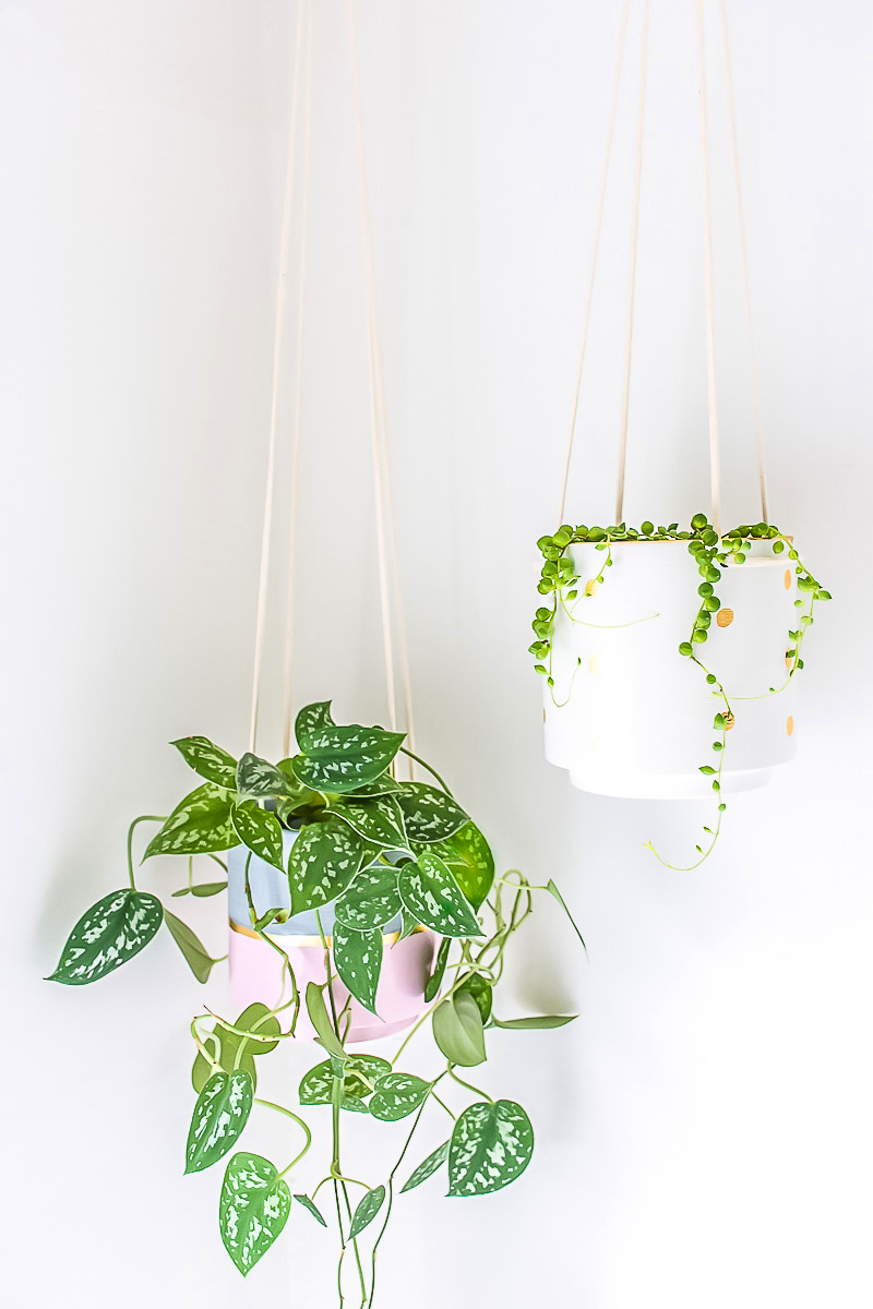 Charming ... Give A Hanging Planter An Easy DIY Upgrade With Paint And Gold Leaf Amazing Design