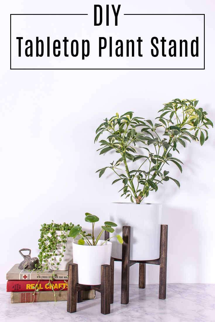 ... To Figure Out How To Make My Own. With Some Square Wood Dowels, Plus  Lots Of Drilling, I Built My Own Tabletop Plant Stand, And Put Together A  Tutorial.