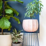 Quick Plant Stand Hack