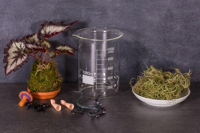 DIY Halloween terrarium supplies