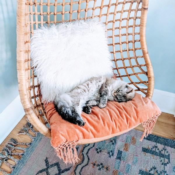 One Room Challenge Week 2: Hanging Chair & Rug