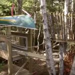 Build An Epic Kids Tree Fort That Will Surpass Most Tree Houses You See