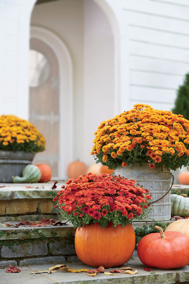 Best Gardening Ideas for Fall - Carve Out A Mumkin - Cool DIY Garden Ideas for Planting Autumn Varieties of Flowers and Vegetables - Pumpkins, Container Gardens, Planting Tips, Herbs and Easy Ideas for Beginners http://diyjoy.com/gardening-ideas-fall