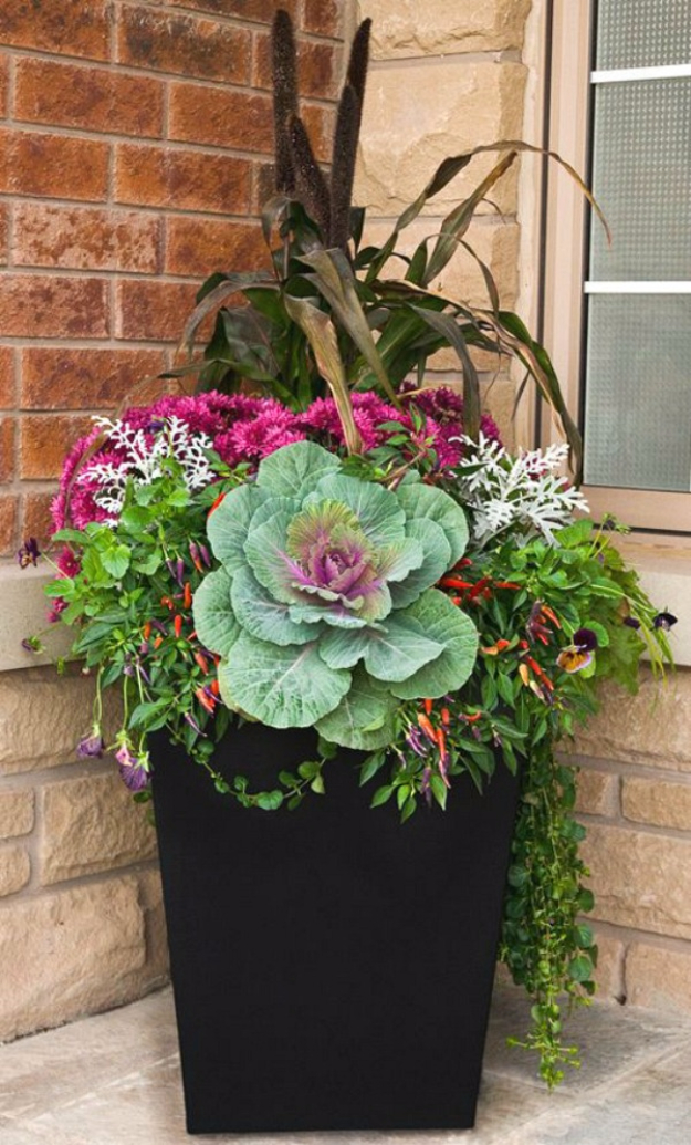 Best Gardening Ideas for Fall - Flowering Cabbage For Fall - Cool DIY Garden Ideas for Planting Autumn Varieties of Flowers and Vegetables - Pumpkins, Container Gardens, Planting Tips, Herbs and Easy Ideas for Beginners http://diyjoy.com/gardening-ideas-fall