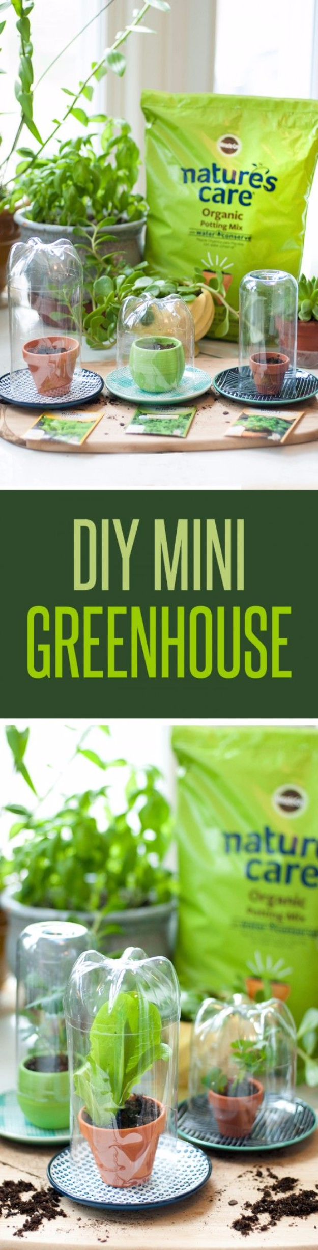 DIY Spring Gardening Projects - DIY Mini Greenhouses - Cool and Easy Planting Tips for Spring Garden - Step by Step Tutorials for Growing Seeds, Plants, Vegetables and Flowers in You Yard - DIY Project Ideas for Women and Men - Creative and Quick Backyard Ideas For Summer http://diyjoy.com/diy-spring-gardening